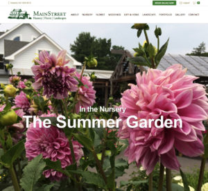 Main Street Nursery Website Home Page